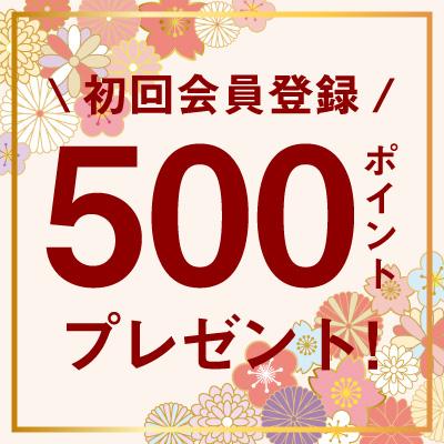 初回会員登録で500ポイントプレゼント