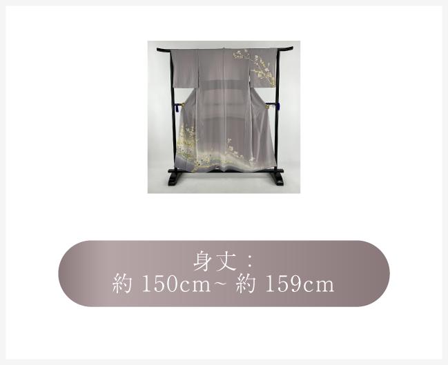 身丈:約150cm~約159cm